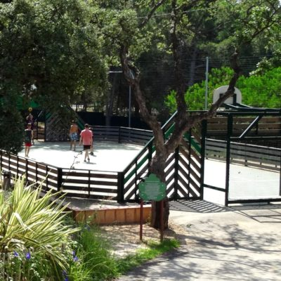 Sport at the Campsite