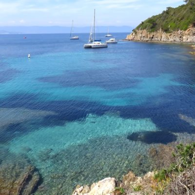 Nature island: Port-Cros