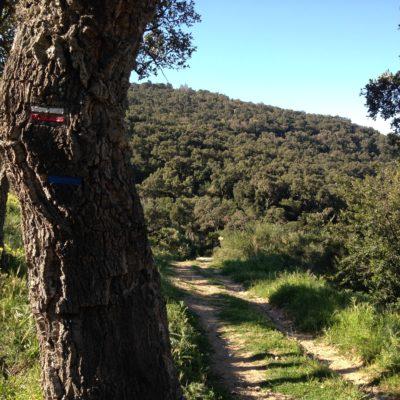 The 3 passes (les trois cols) hiking