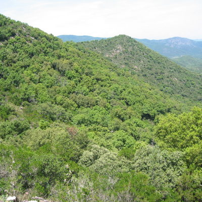 The massif des Maures