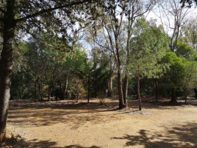 Large pitches South of France - cheap camping