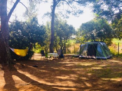 Premium Extra Large pitches camping in the South of France