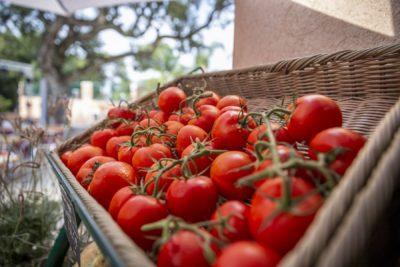 Campsite shop - Provence vegetables