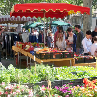 Explore Provence's markets during your camping holiday