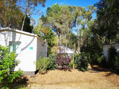 Mobile Home Budget Camping Holiday