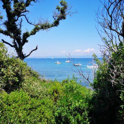 Plage de l'Aiguade on Porquerolles island